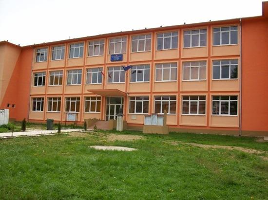 Liceul din Baia de Aries